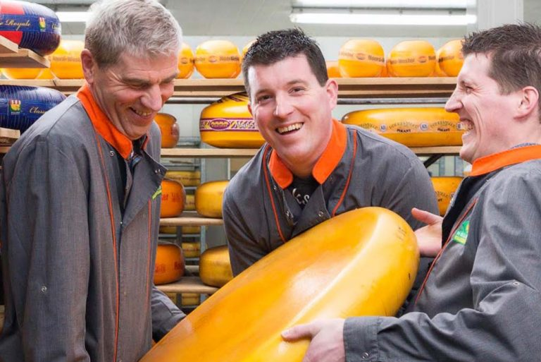 den hollander verse kaas